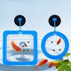 Fish Feeding Ring Aquarium Tank Station Floating Food Feeder Square Circle Tool