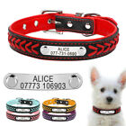 Personalised Braided Leather Dog Collar Custom Soft Padded Collars Engraved XS-L