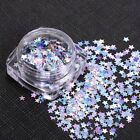 Holographic Nail Art Glitter Sequins Star Flakes 2g Gel Polish Tips Decoration