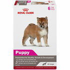 Royal Canin Canine Health Nutrition Puppy In Gel Canned Dog Food
