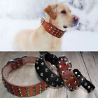 Heavy Duty Real Leather Studded Dog Collars Chihuahua Rottweiler Labrador XS-L