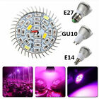 10W LED Full Spectrum Plant Grow Light Lamp For Indoor Garden Greenhouse Flower