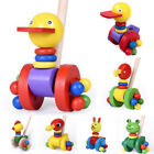 Developmental Push and Pull Along Toy Educational Fashion Handcrafted Frog Kids
