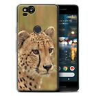 Gel/TPU Phone Case for Google Nexus/Pixel Smartphone/Wild Big Cats/Cover