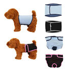 Pet Physiological Pants Belly Band Diaper Sanitary Underwear For Dog Puppy