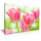 New Tulips Flower Canvas Wall Art Print ~ 5 Sizes