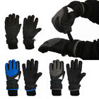 Statements 3 M Thinsulate Boys Winter Cold Weather Warm Fleece Lined Ski Gloves
