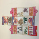 18 Styles Mixed 3D Real Dry Dried Flower Nail Sticker Nail Art Tips Decoration