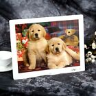 "15/17"" HD Digital Photo Frame Alarm Clock Music Player Album Remote Control T9N4"
