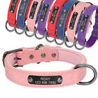 XS-L Leather Dog Collar Personalised with Nameplate Soft Padded Engraved Free