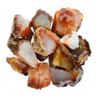 1/4 lb Carnelian Rough Stones - Craft Rocks Reiki Wire Wrapping Tumbling