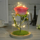 valentine's day led light gift for wife girlfriend mom her him anniversary birt