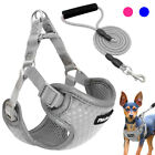 Step In Small Dog Vest Harness&Leash Soft Mesh Reflective for Pet Grey Blue Pink