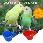 New Poultry Water Drinking Cups Plastic Automatic Drinker Bird Chicken Coop Feed