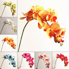 Artificial Fake Silk Flower Phalaenopsis Orchid Floral Party Decoration Wedding