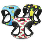 Breathable Mesh Puppy Dog Harness Reflective Pet Cat Walking Vest French Bulldog