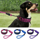 "2"" Wide Dog Collar and Leash Reflective Soft Comfort Padded Small Medium Large"
