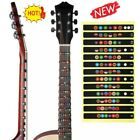 Guitar Fretboard Decal Finger Board Musical Scale Map Sticker Learn Trainer Hot