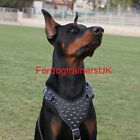 New Spiked Padded  Leather Dog Harness H9 for Doberman