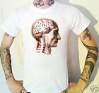 Anatomical Brain T-Shirt Biology Neuroanatomy Anatomy Medical Vintage Bourgery