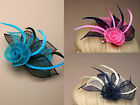 Two Tone Feather Fascinator Beak Clip Brooch Pin Ladies Day Weddings Royal Ascot