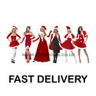 Miss Santa Costume Womens Christmas Costumes Size 6-22 S M L FAST DELIVERY