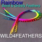 Rainbow Feather Hair Extensions @ Wholesale Prices,AU Seller