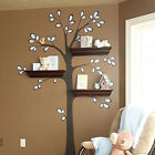Nursery Tree Wall Decal sticker for use with wall Shelf for Wall Decoration
