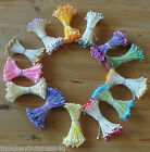 Double ended Pearlized Stamen - Floral - Cake Decoration - Flower Craft - Cards
