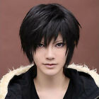 Anime Handsome Boys Short Wig New Vogue Sexy Men's Male Hair Cosplay Wigs Black