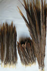 20-100 pcs beautiful natural golden pheasant tail feathers4-30 inch / 10-75 cm