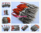 Wholesale 10-200pcs beautiful 2-12 inch/5-30 cm copper chicken red tip feathers