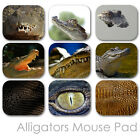 ALLIGATOR CUSTOM MOUSE PAD WILD LIFE PERSONALIZED PHOTO FAMILY MOUSEPAD  (CM-03)