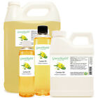 Canola Carrier Oil (100% Pure & Natural) FREE SHIPPING