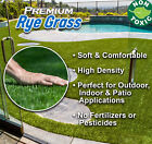 12'Wide RyeGrass Landscape Balcony Artificial Grass Pet Turf Synthetic Fake Lawn