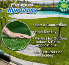 12'Wide RyeGrass Landscape Balcony Artificial Grass Pet T...