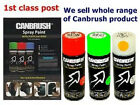 Canbrush Hi Quality Aerosol Spray Paint Interior Exterior Shiny Chrome C018