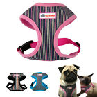 Vertical Stripes Cotton/Polyster Dog Cat Harness for Walking Small Medium Dogs