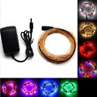 10m 33Ft 100 LEDs LED Starry Light String Fairy Lamp Copper Wire + Power Adapter