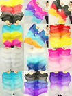 +CARRY BAG PAIRS 1.5M BELLY DANCE 100% SILK BAMBOO FAN VEILS MULTICOLOR  5588