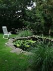 New Garden Pond Liner 9.5m Wide - Suitable for Fish - Plants - Water feature