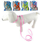 Nylon Puppy Dog Pet Cat Harness & Leash Leads Set Durable Safety for Small Dogs