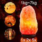 Himalayan Salt Lamp Natural Crystal Rock Shape Dimmer Switch Night Light 1-14 Kg