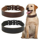 Genuine Leather Dog Collars Best For Medium Large Dogs Bulldog Labrador 3 Sizes