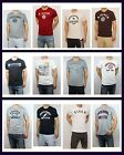 NWT Abercrombie & Fitch by Hollister Mens Logo T shirt Graphic Tee