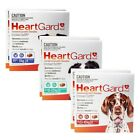 HEARTGARD PLUS Special Value Offer 12-Chews for Dogs-PL