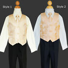 Boys Toddler Christmas, Vest Suit Set, Ivory and Gold, Size:2T,3T,4T,5,6,7
