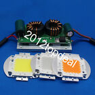 12V 100W LED Driver With High Power LED Chip Royal Blue Warm /Cool White 840nm