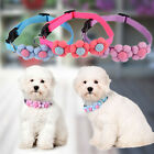 Small Dog / Puppy / Cat / Pet Adjustable Nylon Collar with Buckle Pet Decoration