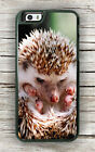HEDGEHOG FUNNY FACE DESIGN CASE FOR iPHONE 6 & 6 PLUS -was3X